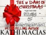 12 Days of Christmas Series