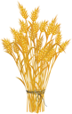 golden_wheat_icon_tns